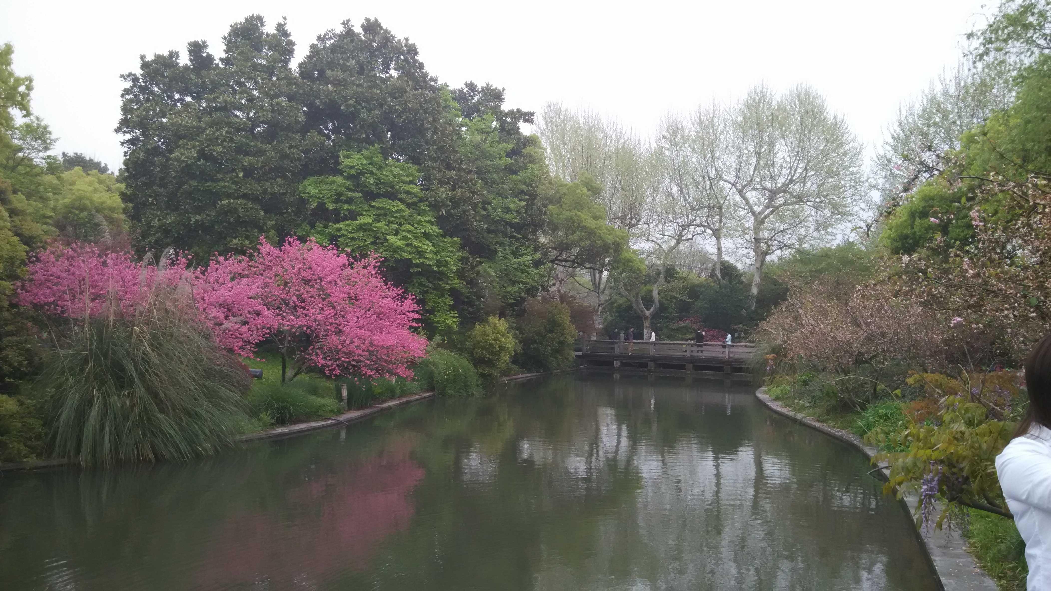 [原创]杭州西湖的一日游   动漫技术宅